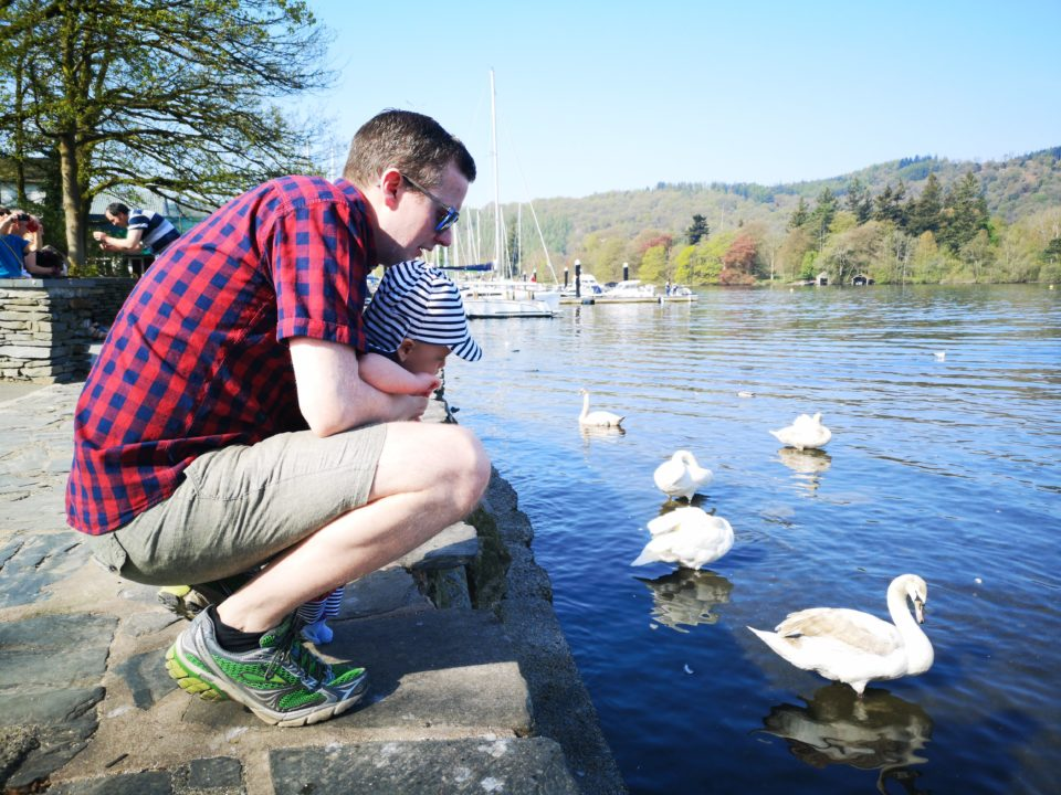 Dad and baby feeding the ducks at Lake Winderemere