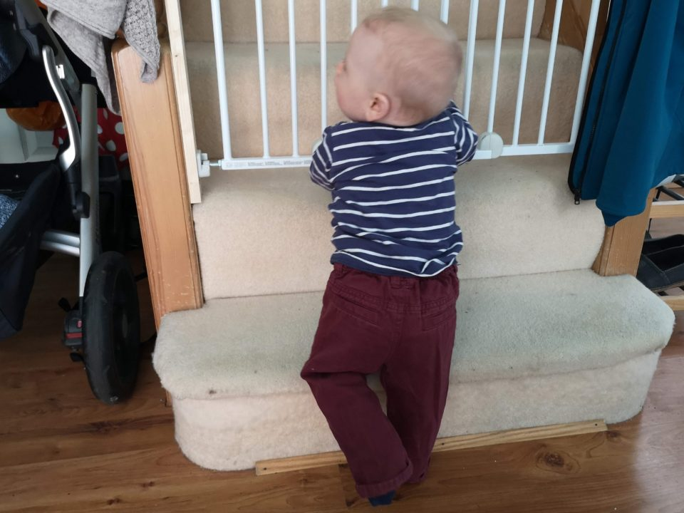 Baby standing next to stair gate