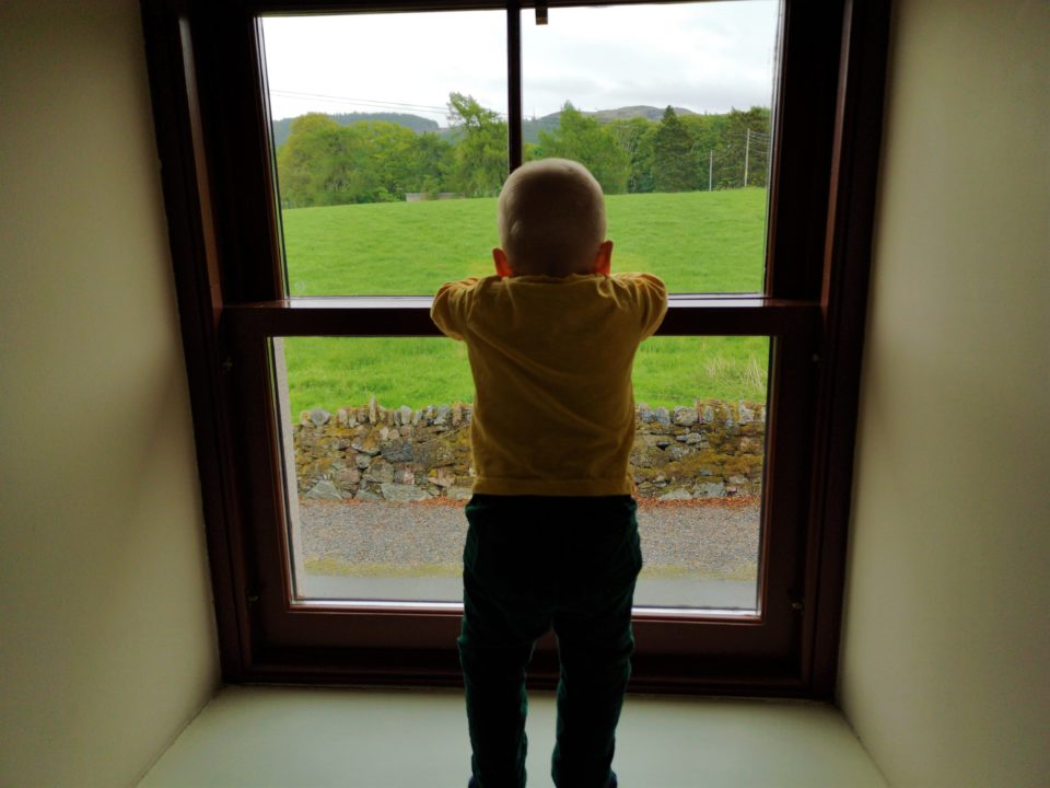 Baby looking at countryside through window