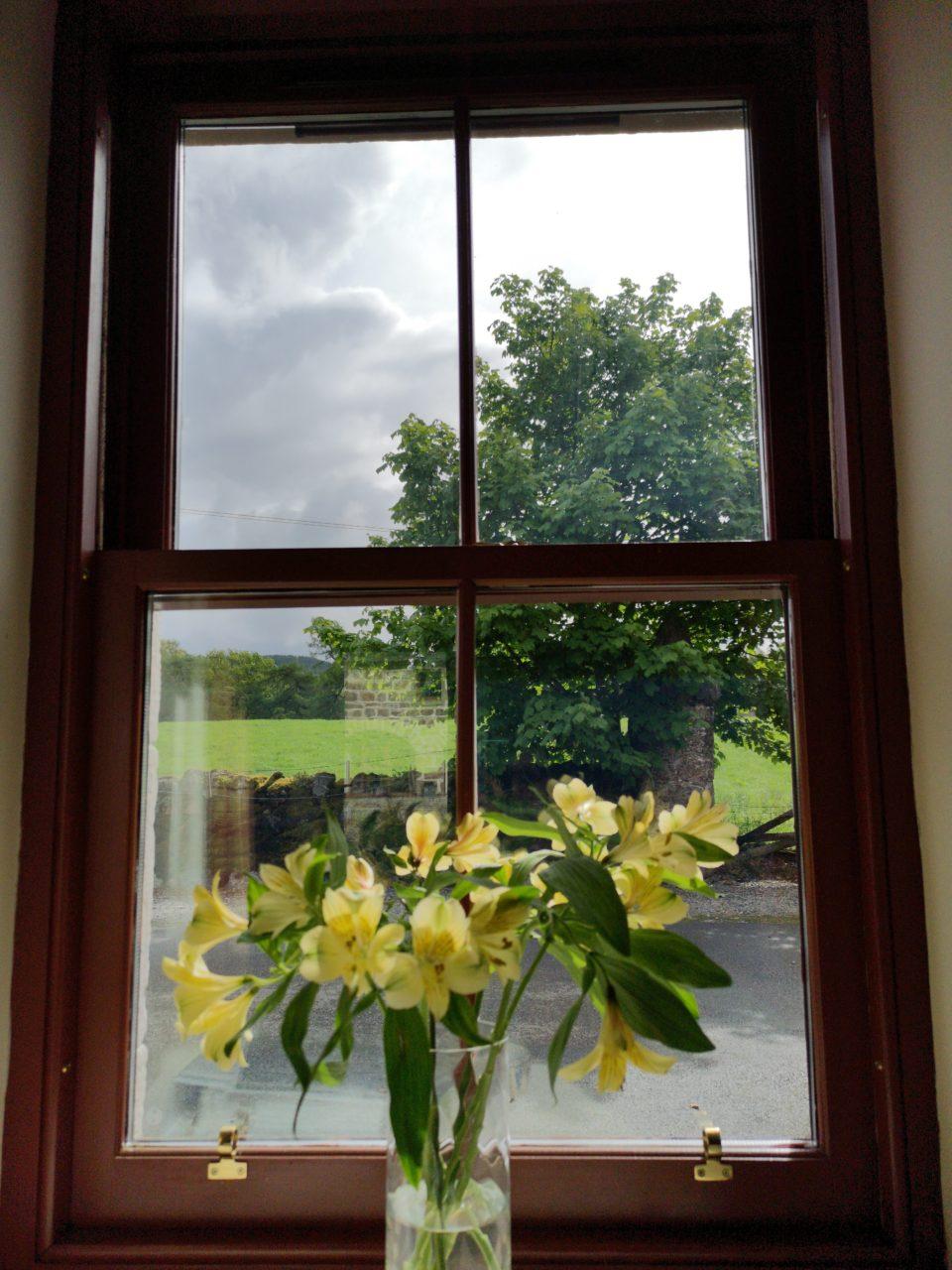 Yellow flowers in glass vase on windowsill