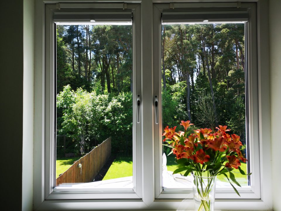 View out of window with orange flowers on sill