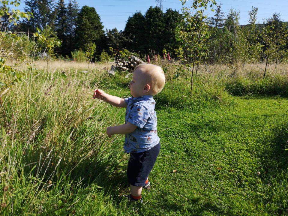 Toddler playing in long grass